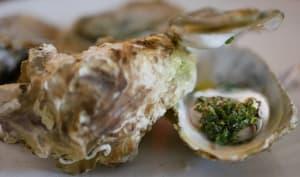 Huîtres chaudes et huile aux fines herbes