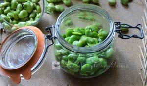 Conserves de fèves fraîches au naturel