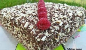 Gâteau chocolat / mousse framboise