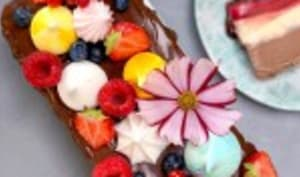 Le gâteau glacé spécial canicule