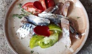 Sardines et maquereaux marinés au sel et à l'huile d'olive