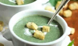 Soupe d'orties crémeuse