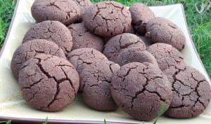 Biscuit chocolat sarrasin