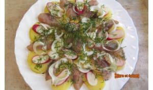 Salade de pommes de terre tièdes aux harengs fumés, radis et aneth
