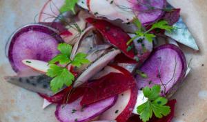 Maquereaux marinés, radis et betterave
