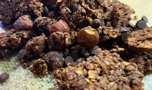 Granola Chocolat Noisettes