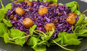 Salade de chou rouge aux noix de pétoncles