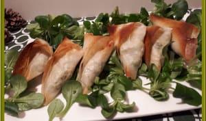 Samoussas à la dinde et brocolis