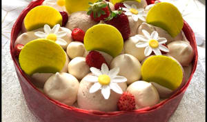 Extase fraise rhubarbe