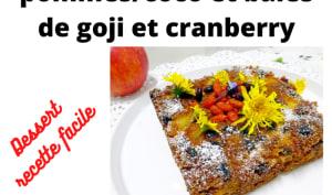 Gâteau aux pommes, coco, baies de goji, cranberry et raisins secs