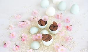 Fèves de cacao au chocolat noir