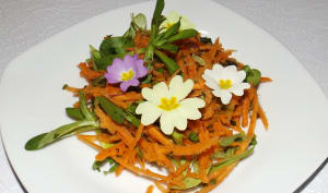 Salade de carottes râpées aux plantes sauvages