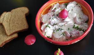 Salade de radis au fromage blanc