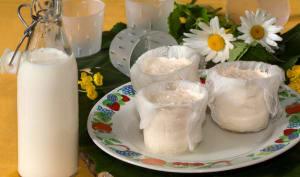 Petites faisselles au lait de chèvre