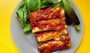 Cannellonis traditionnels à la viande
