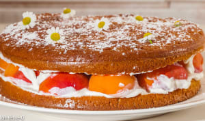 Gâteau abricots ricotta