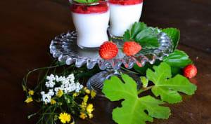 Panna cotta à la feuille de figuier et compotée de fraises au basilic
