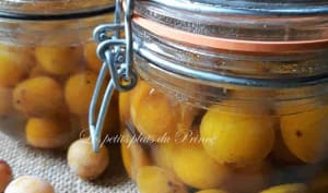 Conserves de prunes mirabelles au sirop