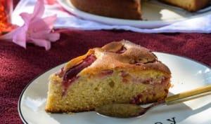 Gâteau épicé aux prunes et au miel