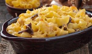 Gratin de macaroni champignons poulet
