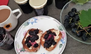 Confiture de raisins (sans vrai sucre, ig bas)