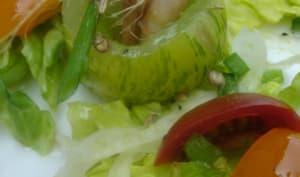 Salade de tomates en méli-mélo, crevettes grises au Pastis, vinaigrette acidulée