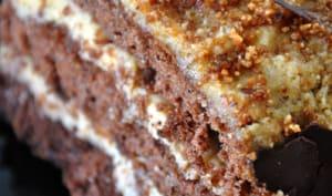Génoise au chocolat et mousse de mascarpone au praliné