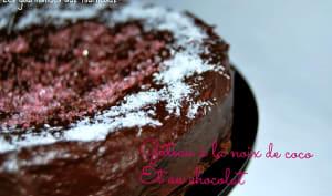 Gâteau à la noix de coco et au chocolat