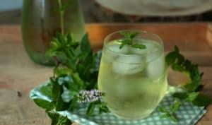 Thé glacé maison à la menthe