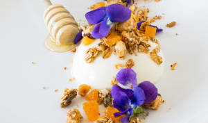 Panna Cotta au Fromage Blanc, Miel, Granola Noisettes-Abricots et Fleurs de Violette