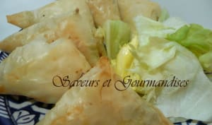 Samossas au fromage