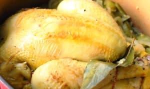 Poulet en cocotte aux poivrons, ail et oignon