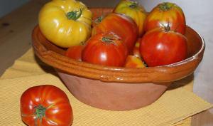 Récolte de tomates anciennes dans un saladier en terre cuite