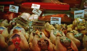 Exposition de poulets fermiers