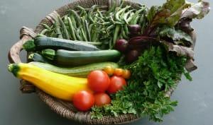 Panier de légumes variés