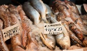 Etal de poisson