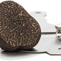 mandoline à truffe