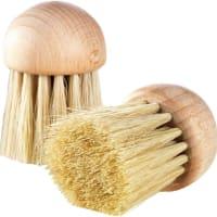 brosse à champignons