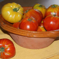 tomates anciennes