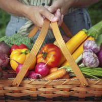 cuisine healthy