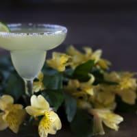 cocktails à la tequila