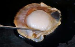 Parer une noix de saint Jacques - Etape 1