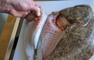 Lever des filets de turbot - Etape 4