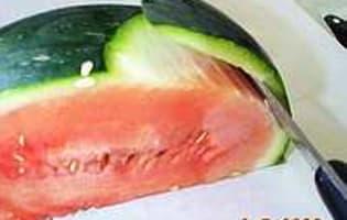 Pastèque et melon - Etape 4