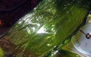 Vitrail de poireaux - Etape 9