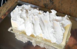 Bûche de noël glacée à la mandarine - Etape 13