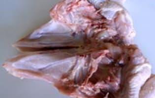 Découper une volaille à cru en 4 ou 8 morceaux - La découpe des flancs - Etape 5