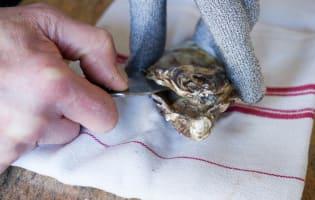 Ouvrir les huîtres facilement - Etape 5