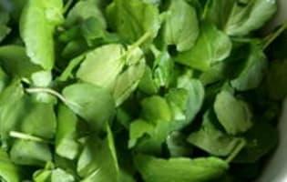 Sauce cressonnière - Etape 1