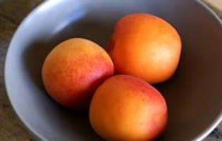 Clafoutis aux abricots et au chocolat - Etape 7